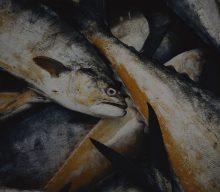 16/08/2019 – ICMS sobre Pescados – SP: Sefaz atende pleito sobre operação com pescados
